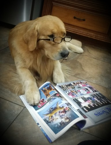 AJ.reading.dog.news